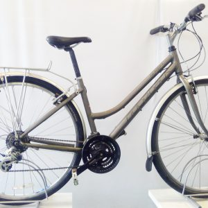Image of the refurbished Ridgeback Speed for sale