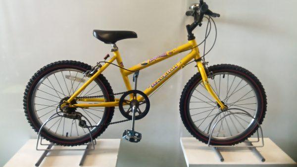 Raleigh Spicee junior mountain bike