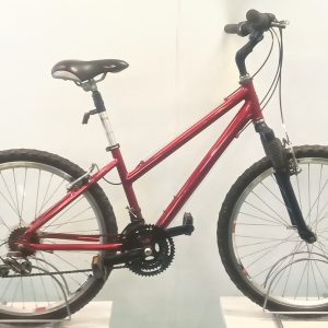 Image of the Refurbished Raleigh Town Bike for sale