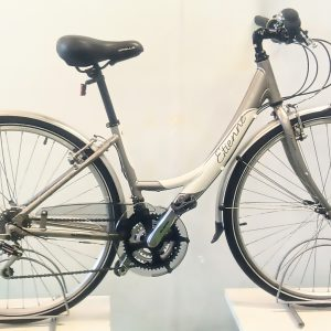Imag of the Refurbished Apollo Etienne Town Bike for sale